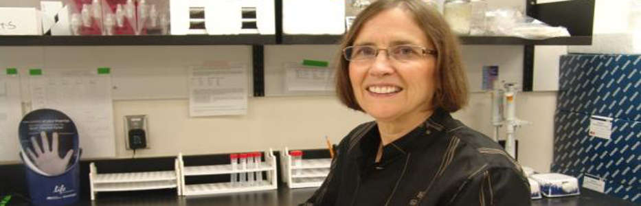 Researcher gets $1.4m to study dementia in Indigenous seniors